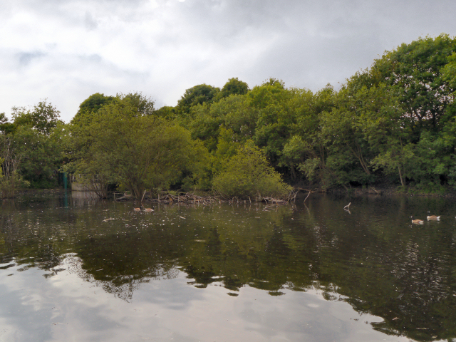 Carrbrook, Duck Island