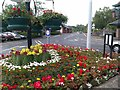 H4572 : Floral display at Spillars Place, Omagh by Kenneth  Allen