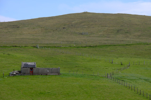 Shed on the slopes of the Ward of Eswick, South Nesting