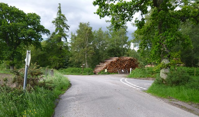 Timber stacked next to the road, by Upper Reelig