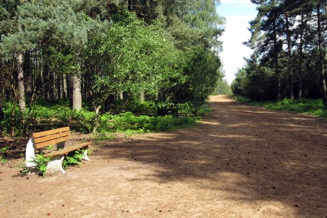 Bench on the bridleway to Wavendon Heath