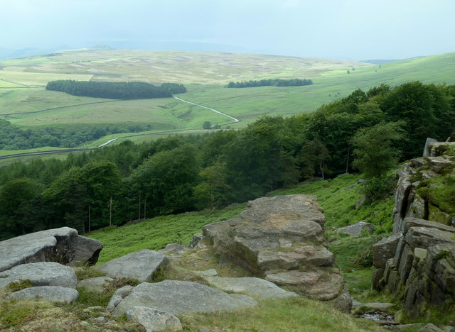 Above Stanage Plantation