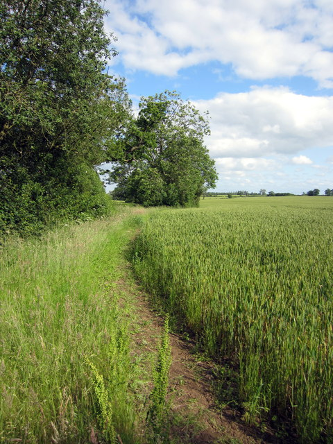 Path to Wicken