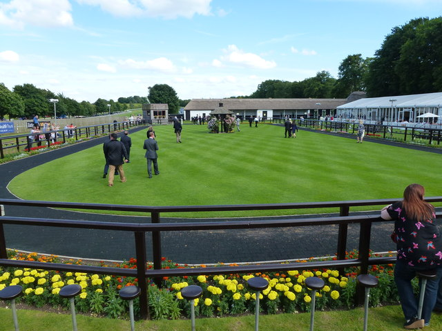 The July Course, Newmarket - Awaiting the winner