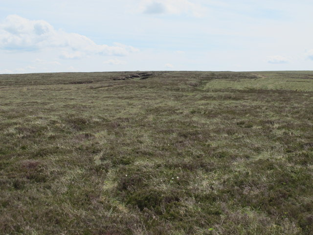 The Northumberland/Durham county border ridge below Killhope Law (3)