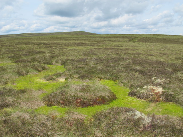 Even more bog on the Northumberland/Durham county border ridge below Killhope Law