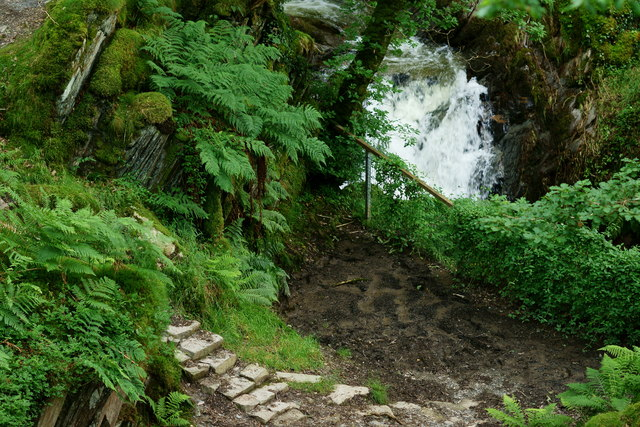 Looking Down to the Dolgoch Falls, Gwynedd