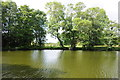 SO8774 : Lake beside Harvington Hall by Philip Halling