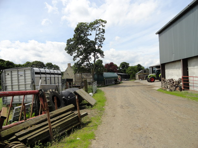 Airy Holm Farm