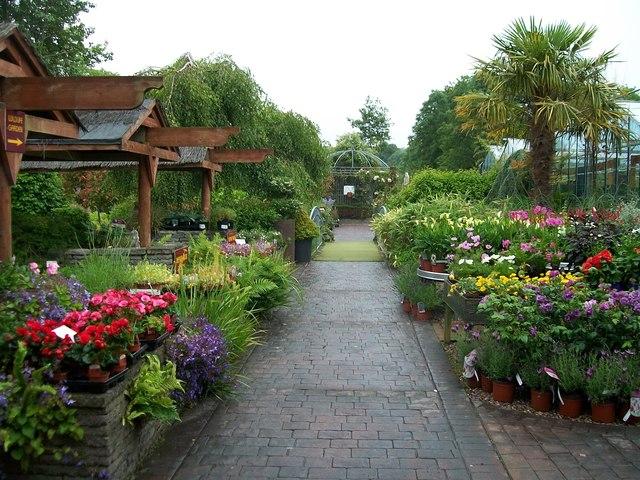 Garden Centre: Annetts Garden Centre, Rath Road,... © Eric Jones