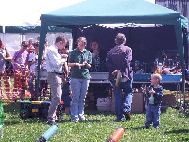 Tring Carnival - the ferrets prepare!