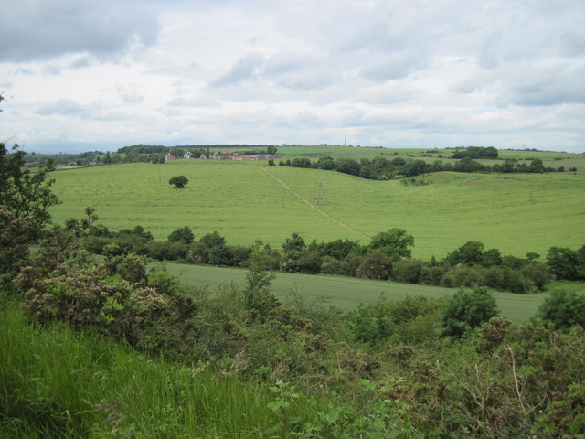 Looking  down  the  Slade  Hills