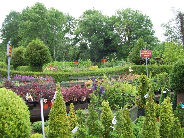 Masses of greenery at the Annett's Garden Centre, Warrenpoint