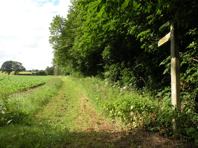 Public bridleway just west of Borley Green