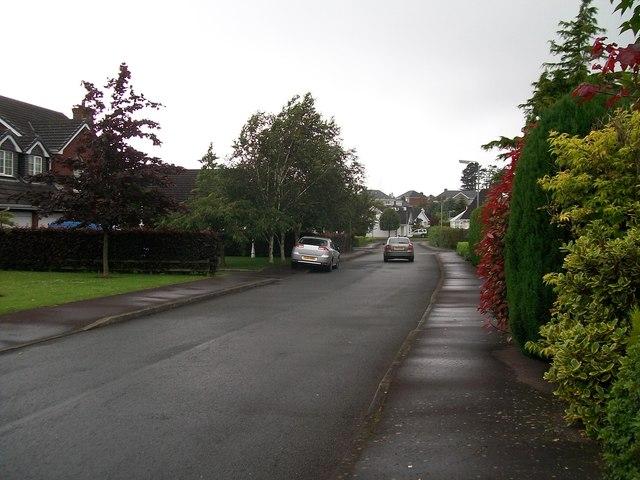 Rowallon Estate, Warrenpoint