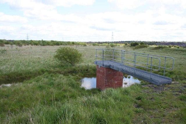 """Lagoon"", Frodsham Marsh"