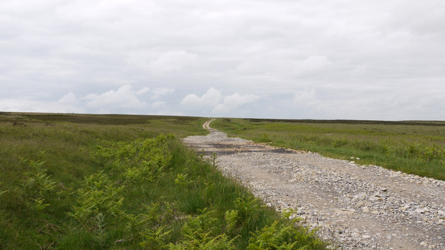 Road crossing Little Moor