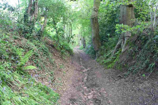Restricted byway between Frodsham and Bradley