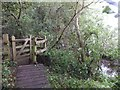 SZ5884 : Boardwalk and kissing gate, Blackpan Common by David Smith