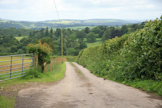 Estate track from Common Lane
