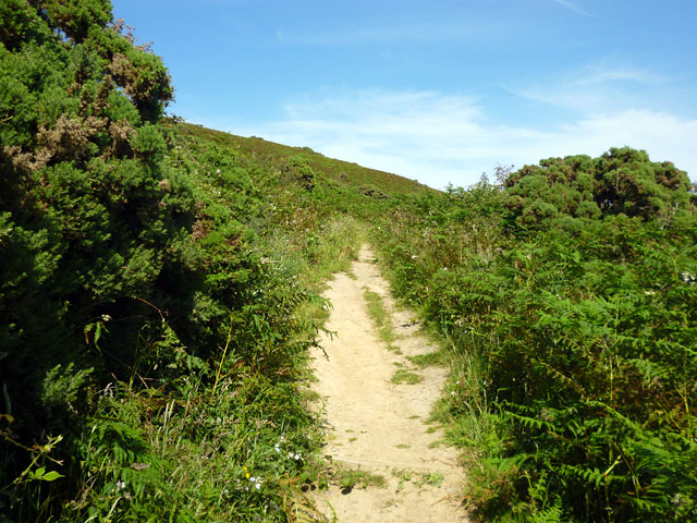 Cliff top path, Fairlight