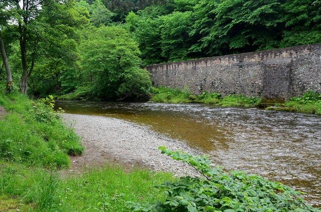 Shingle bank on the River Teviot