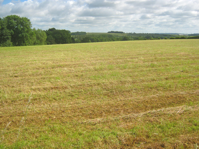 Arable land north of Denton