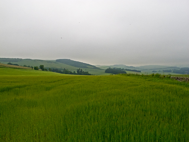 Farmland near Forret Mill
