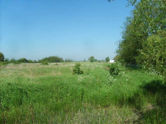 Dymchurch Fields