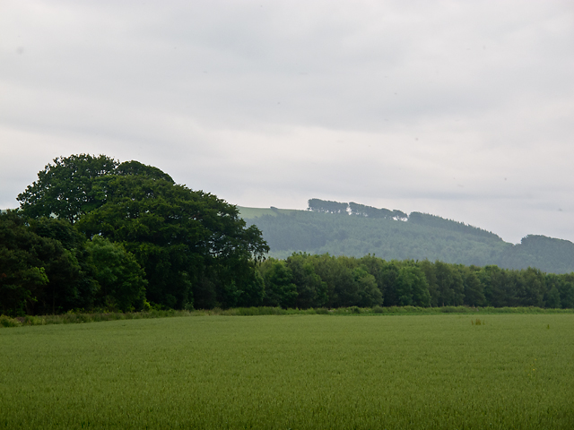 Farmland near Springfield