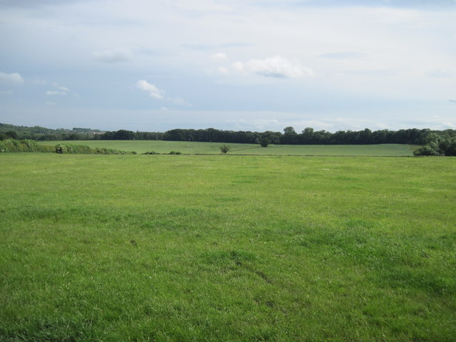 Fields  to  Owday  Lane