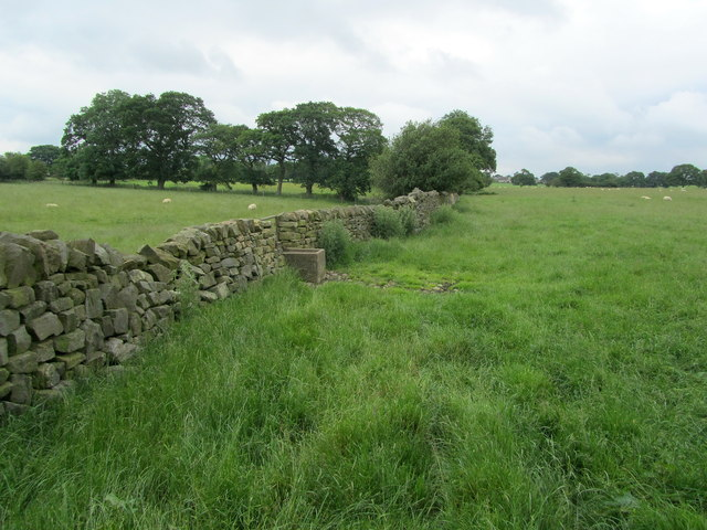 Monk Wall near Dinmore House