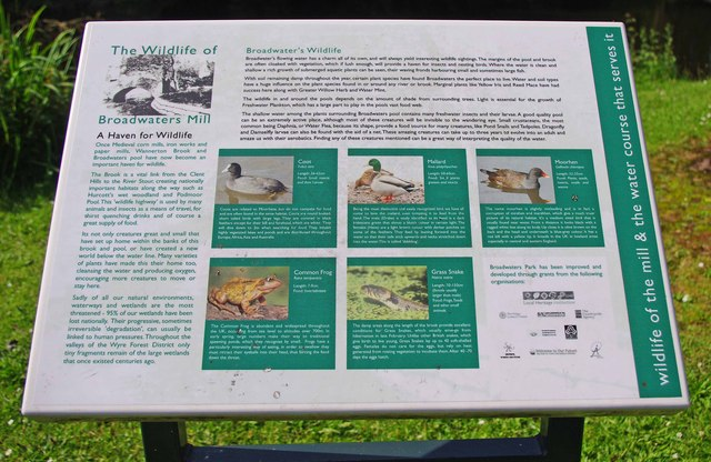 Information board in Broadwaters Park, Stourbridge Road, Broadwaters, Kidderminster