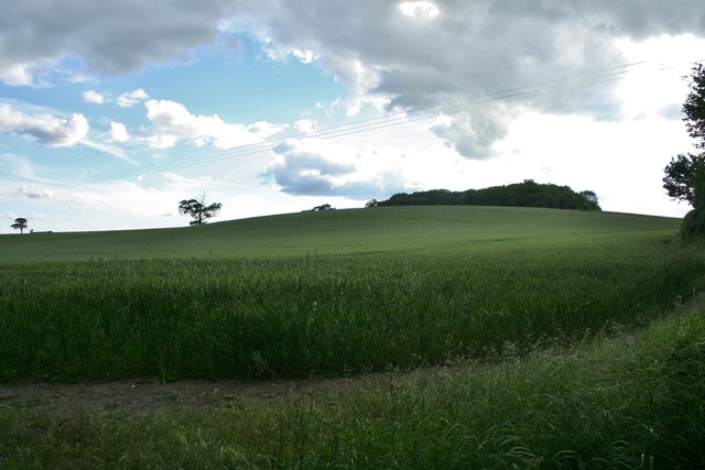 Rennesley Garden Wood, High Cross
