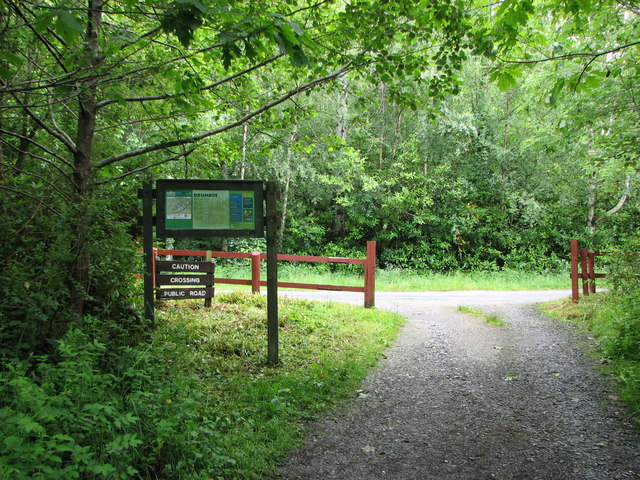 Nature Trail, Drumboe Woods