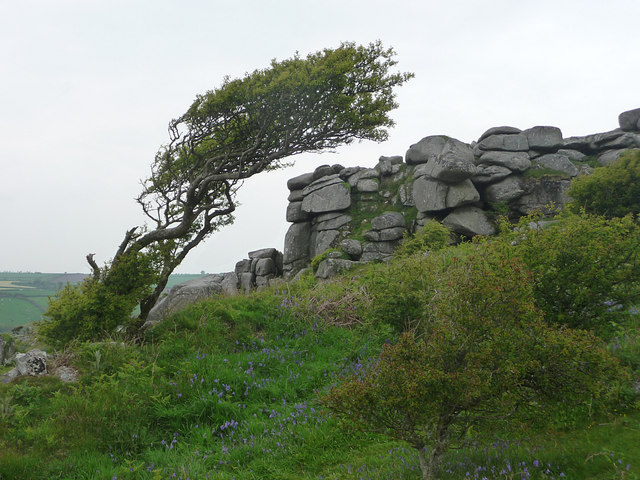 Helman Tor