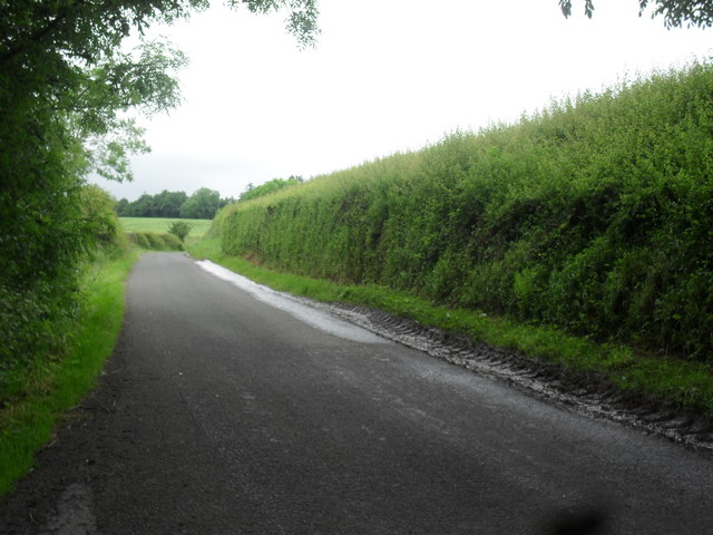 Looking north along a farm link road