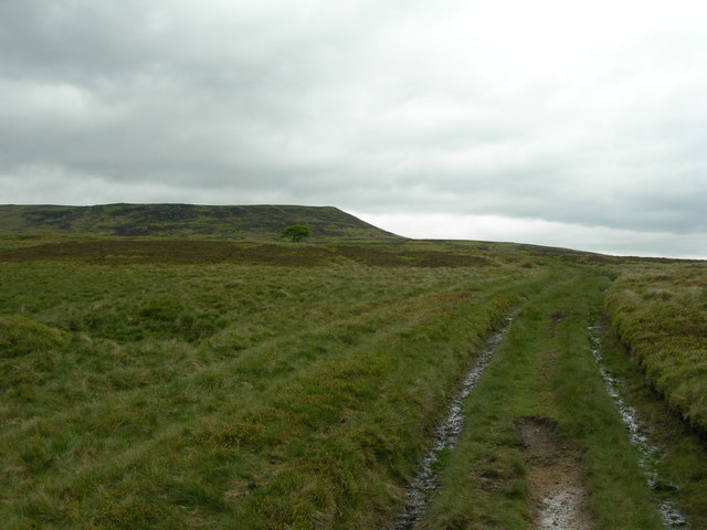 Crookstone Hill