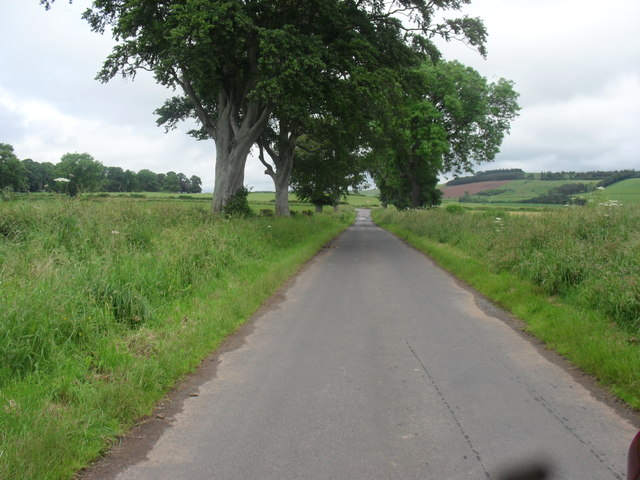 Looking east on the Caverton Mains road