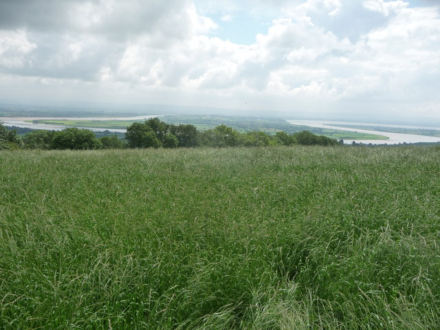 View down to Arlingham from near Little Dean