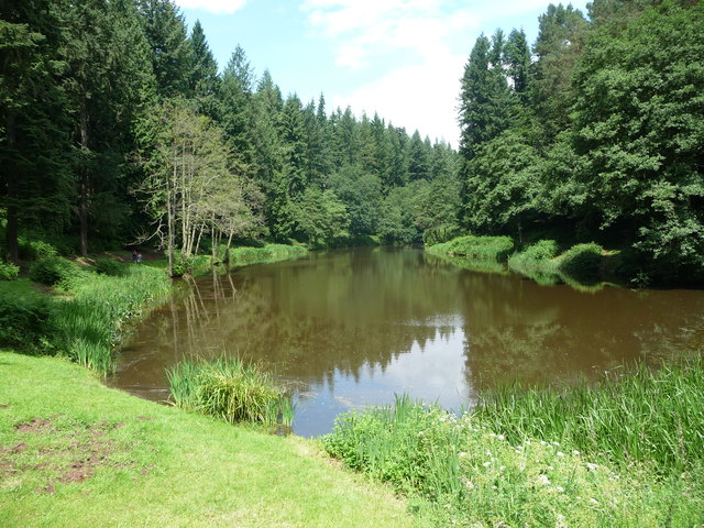 Part of Soudley Ponds