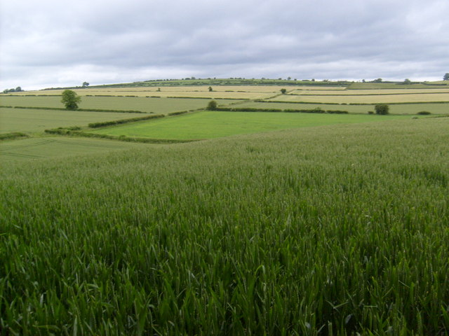 North of Lingmoor Barn