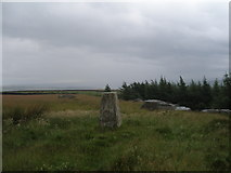 SE0744 : The trig point at Rivock Edge by John Slater