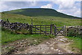 SD7673 : Footpath to Ingleborough by Ian Taylor