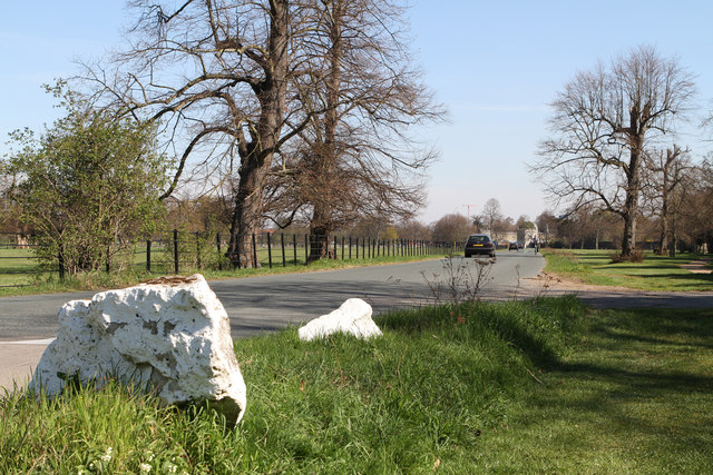 Road Through Syon Park