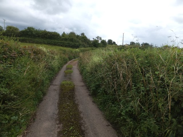 Lane from Sand Lane into Berry Pomeroy