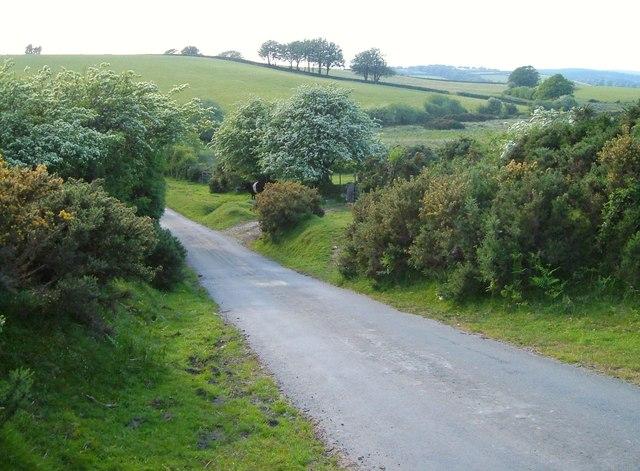 Lane below Rowden
