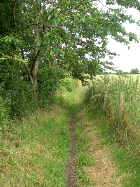 Path from Hall Wood to Hall Road