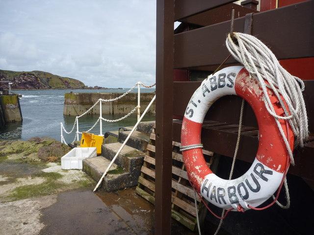 Coastal Berwickshire : St. Abbs Harbour