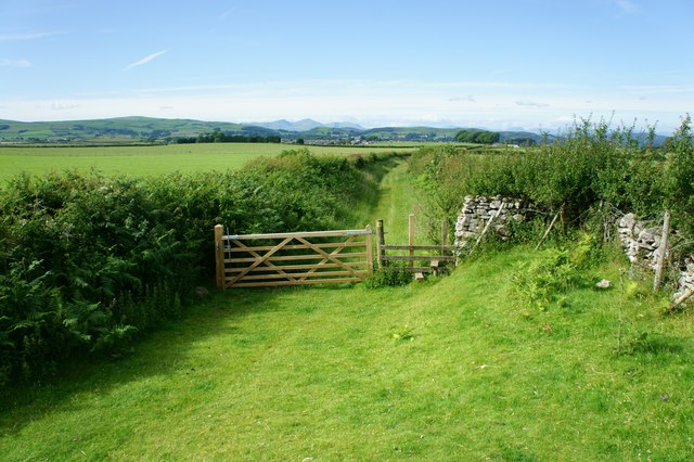 Wooden gate and stile
